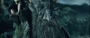Treebeard Decides For War